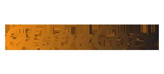 Globecore_Carrusel_logos